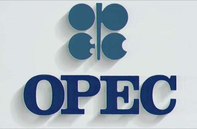 مسؤول إيراني: لا يحق لأي عضو من أوبك أخذ حصة عضو آخر من صادرات النفط