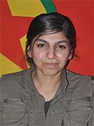 حزب العمال التركي يعلن اسماء وصور 5 من قتلاه بالقصف التركي بالعراق