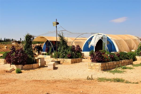 المخيمات التي تحوّلت إلى حدائق!