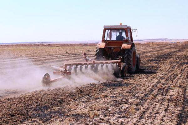 كيف أثّرت الحرائق على الأراضي الزراعية وما هي التدابير العلاجية