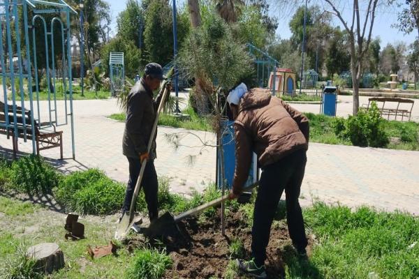 زراعة الأشجار أقل ما نهديه لقائد ناضل ويناضل من أجل حريتنا