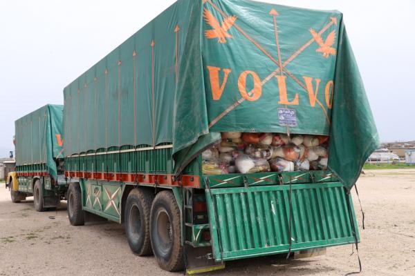 إرسال ألف سلة غذائية إلى قامشلو لتوزيعها على المحتاجين