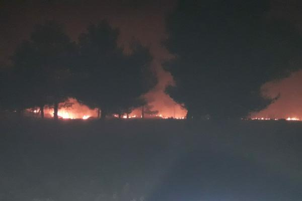 Occupation sets fire in Sherawa villages' lands in Afrin