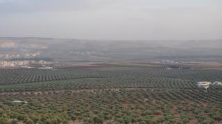 Turkey plundering our life-long efforts by stealing olive season'