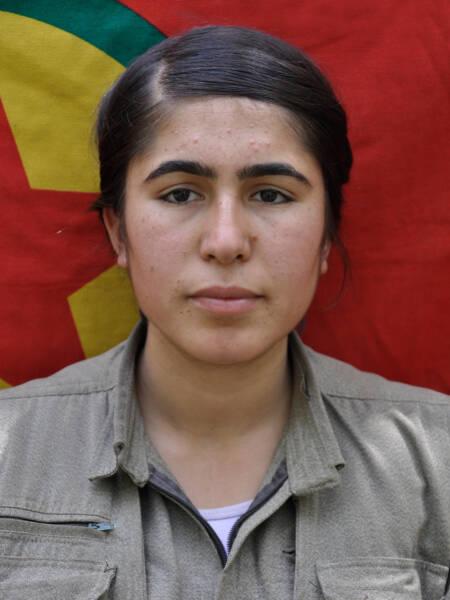https://www.hawarnews.com/kr/uploads/files/2021/02/28/081250_zeynep-arin-kop.jpg