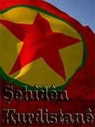 https://www.hawarnews.com/kr/uploads/files/2021/02/28/081308_sarina-tekosin.jpg