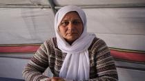 'Cihên dîrokî yên Efrînê têne talankirin'