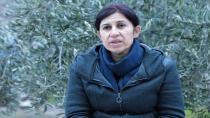 Hediye Yûsif: Rizgarkirina Efrînê navnîşana sereke ya hemû hevdîtinên dîplomatîk in