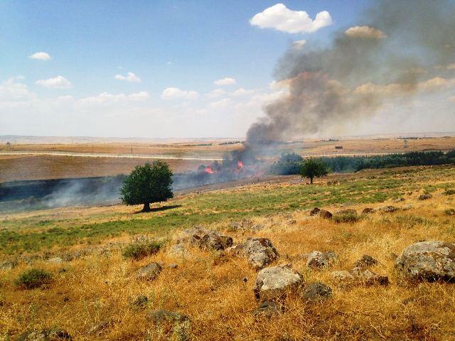 Турецкая армия сожгла поля с урожаем пшеницы в Тербаспие