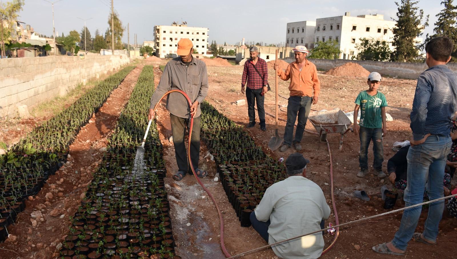 Efrînliler her yerde doğayla bağ kuruyor
