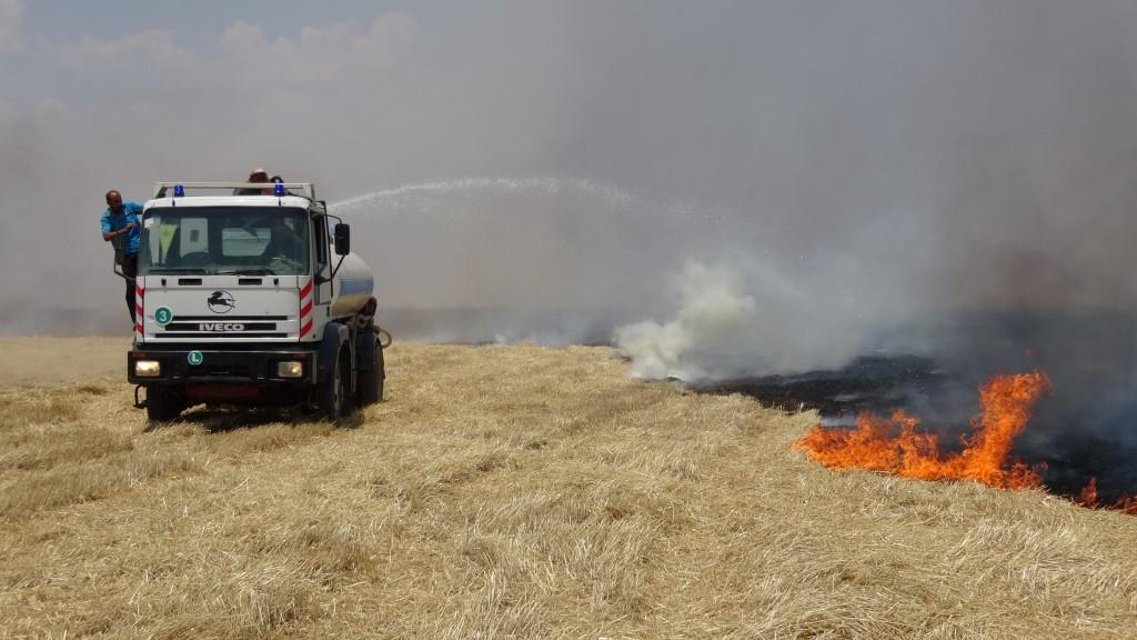 Til Hemîs ve Amûdê'deki tarım arazilerinde yangın çıktı