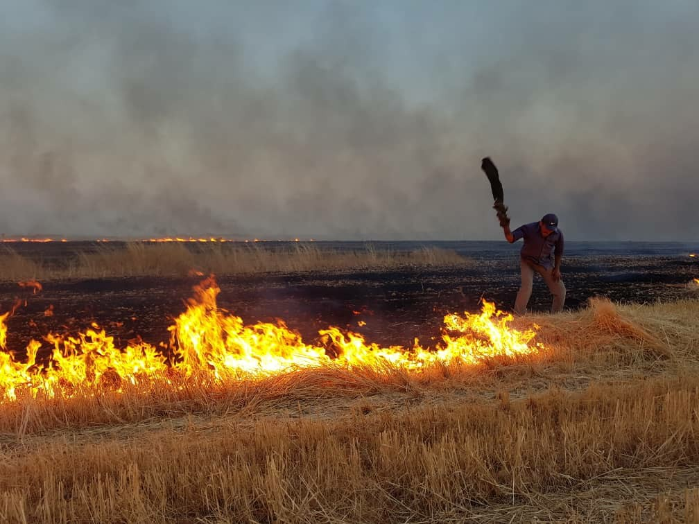 Türk askerleri Kobanê'deki yangını söndürmeye çalışanlara ateş açıyor