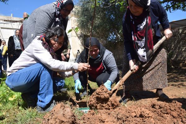 Rojava'da 4 Nisan fidan dikilerek kutlandı