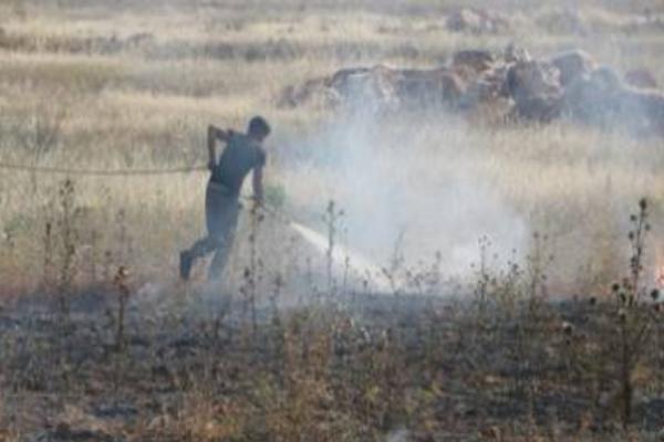 İşgalciler Şehba'da tarım arazileri ateşe verdi: Alevler köylere yaklaşıyor