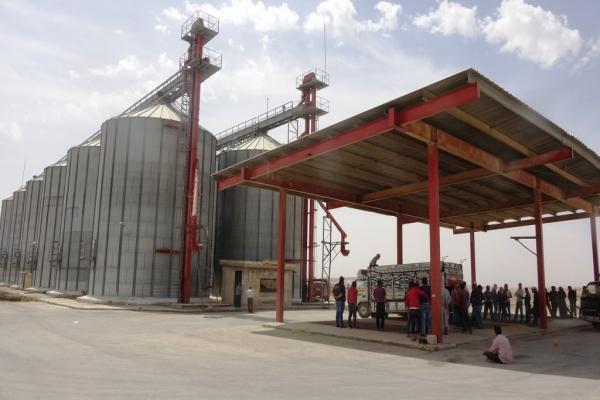 Fırat Bölgesi'nde buğday alımı başladı