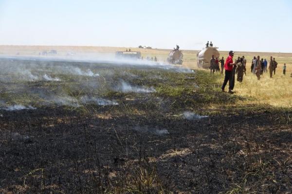 Til Hemis'te 156 hektar ekili arazi yandı