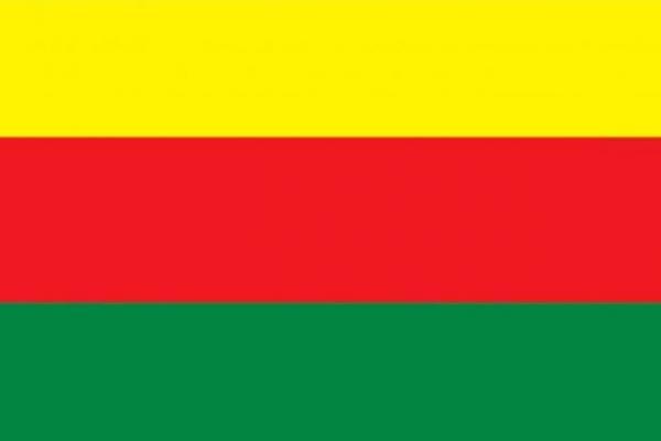 TEV-DEM: Efrîn'de işlenen suçlara ilişkin soruşturma komisyonu kurulmalı