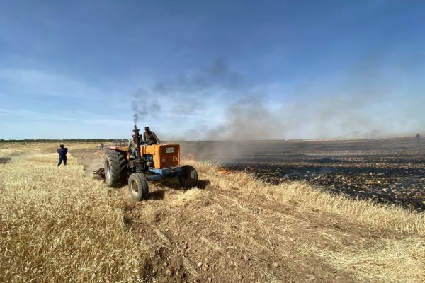 Kobanê'deki arazi yangınında bir itfaiyeci yaralandı