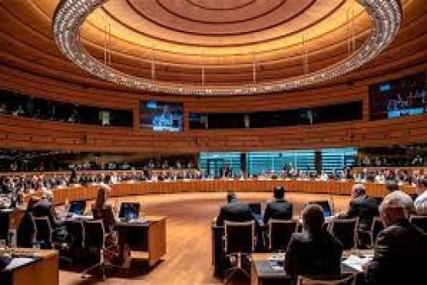 BMGK'de Libya'ya yönelik dış müdahale eleştirildi