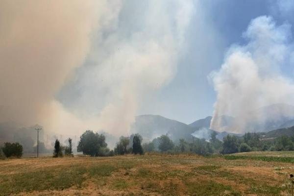 Garzan Mezarlığı yakınında yangın: TC itfaiyesi müdahale etmiyor