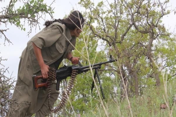 HPG: Heftanin ve Siirt'te 34 işgalci cezalandırıldı