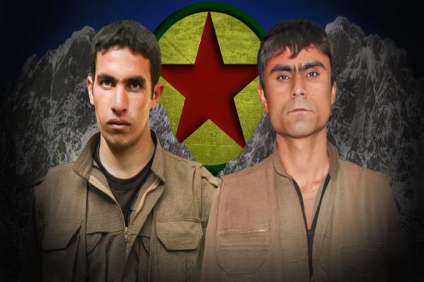 Mardin ve Hakkari'de şehit düşen gerillaların kimliği açıklandı