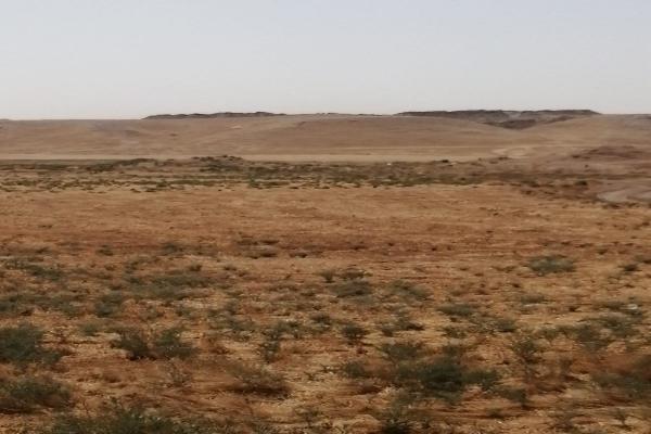 Türk devleti Girê Spî'de 2 höyüğü daha yağmaladı